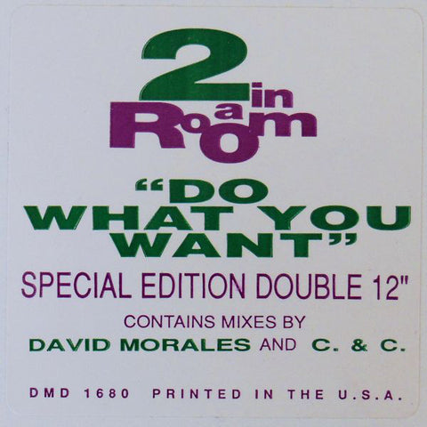 "2 In A Room ‎– Do What You Want - VG+ 2x 12"" Single Record 1990 USA Promo Vinyl - House"