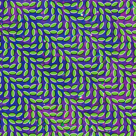 Animal Collective - Merriweather Post Pavilion - New 2 Lp Record 2009 Domino USA 180 Gram Vinyl & Download - Psychedelic Rock / Indie Rock