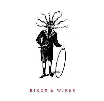 Birds And Wires ‎– Untitled - New Vinyl Record 2009 (Washington D.C. Local Band)(Grey Swirl Vinyl 300 Made with Download and Insert) - Hardcore/Punk/Indie