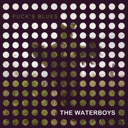 "Waterboys, The - Puck's Blues - New 10"" Vinyl RSD 2015 Pressing - Includes download, limited to 1100"