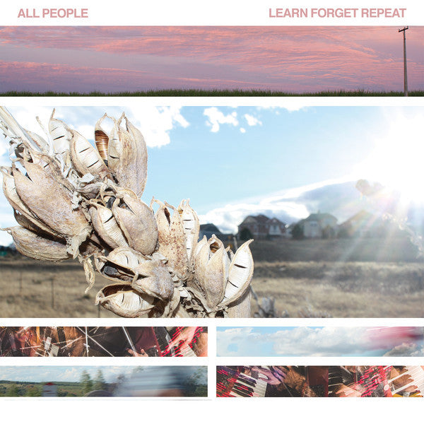 All People - Learn Forget Repeat - New Vinyl 2015 Community Records First Press (250!) on Ultra Clear / Baby Blue Mix Vinyl (Gorgeous!) - Post-Punk / Experimental Indie
