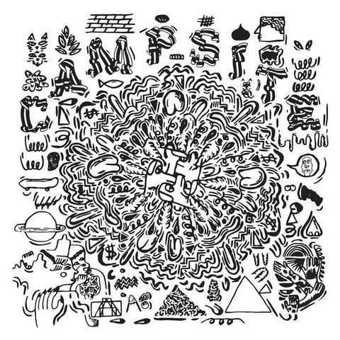 Campsite - 2 Fotographic - New Vinyl Record 2015 Anticon USA w/ Download - Hip Hop / Electronic / Abstract