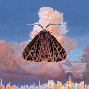 Chairlift - Moth - New Lp Record 2016 Columbia USA Vinyl & Download - Synth-pop / Indie Pop