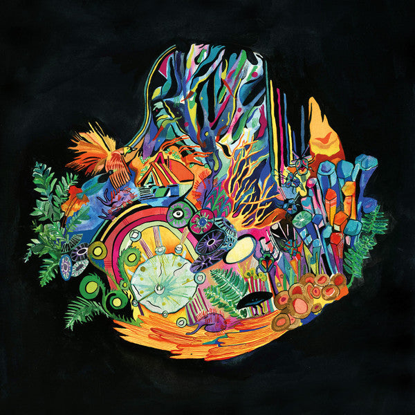 Kaitlyn Aurelia Smith - Ears - New Vinyl Record 2016 Western Vinyl Limited Edition w/ Download - Electronic / Abstract / Modular Synthesis