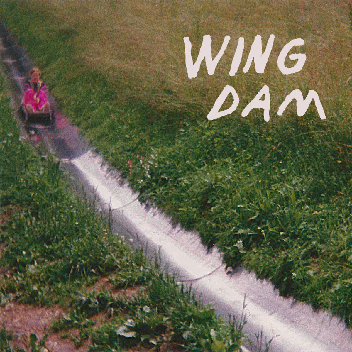 Wing Dam - Glow Ahead - New Vinyl Record 2016 Friends Records LP - Fuzz Pop / Indie Rock