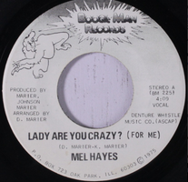 Mel Hayes / The Boogie Man Orchestra ‎– Lady Are You Crazy (For Me) - VG 45rpm 1975 USA - Chicago Disco