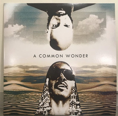 Amerigo Gazaway ‎– A Common Wonder (Common & Stevie Wonder) - New 2 Lp Record 2017 Europe Import Vinyl - Hip Hop / Soul