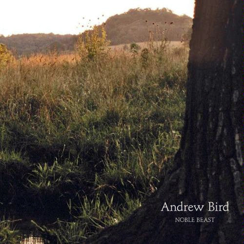 Andrew Bird - Noble Beast - New Lp Record 2009 USA Vinyl & Download - Indie Rock