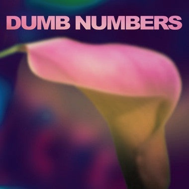 Dumb Numbers - S/T - New Vinyl Record 2013 Joyful Noise Blue Vinyl LP + Download. Feat Lou + Murph from Dino Jr, Dale Crover (Melvins!) - Dark / Slow Indie Rock w/ some Psych / Shoegaze vibes thrown in.