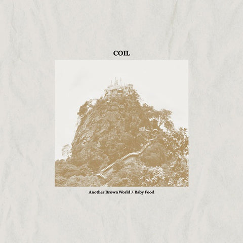 Coil ‎– Another Brown World / Baby Food - New Vinyl Record 2017 Sub Rosa Pressing - Electronic / Industrial