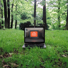 The Other People Place - Lifestyles of the Laptop Cafe - New Vinyl 2017 Warp Records 2-LP Reissue + Download - Electronic / Downtempo