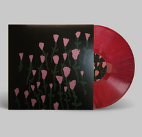 Dehd ‎- Dehd & Fire Of Love - New Lp Record 2017 Limited To 34 on Dragons Blood Colored Vinyl Shuga Records Exclusive With Insert & Sticker - Chicago Rock / Pop