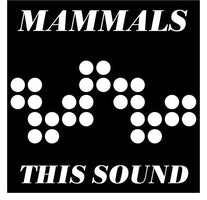 "Mammals - This Sound / No Easy Way - New 7"" Vinyl 2017 Lamont Records Pressing with Download (Limited to 300!) - Chicago, IL Power-Pop / Garage"