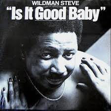 Wildman Steve - Is It Good Baby - VG+ 1980 Stereo USA - Comedy