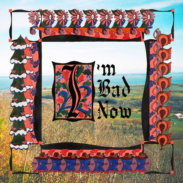 Nap Eyes - I'm Bad Now - New Vinyl Lp 2018 Paradise Bachelors Black Vinyl Pressing with Download - Indie / Lo-Fi / Alt-Rock (FFO: Kurt Vile, Bell & Sebastian)