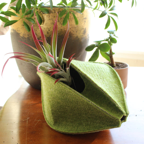 CHERRYSTONE® Upcycled Fabric Indoor Potted Plant Cover | Marc Pascal Designer Shape | Peanut Medium | Fresh Green - CHERRYSTONE by MARKET TO JAPAN LLC