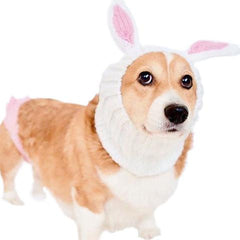 easter bunny dog snood zoo snood