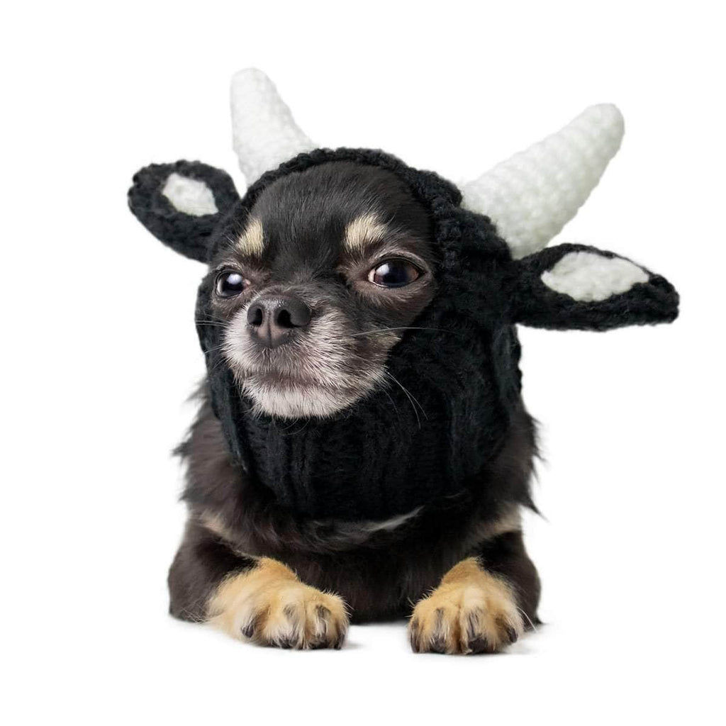 Dog Costume Bull Zoo Snood