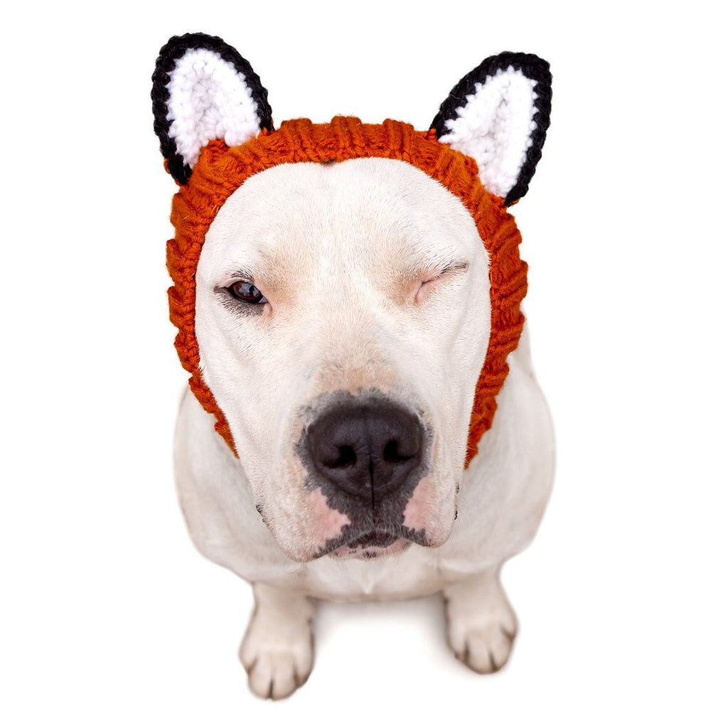 Dog Costume Fox Zoo Snood