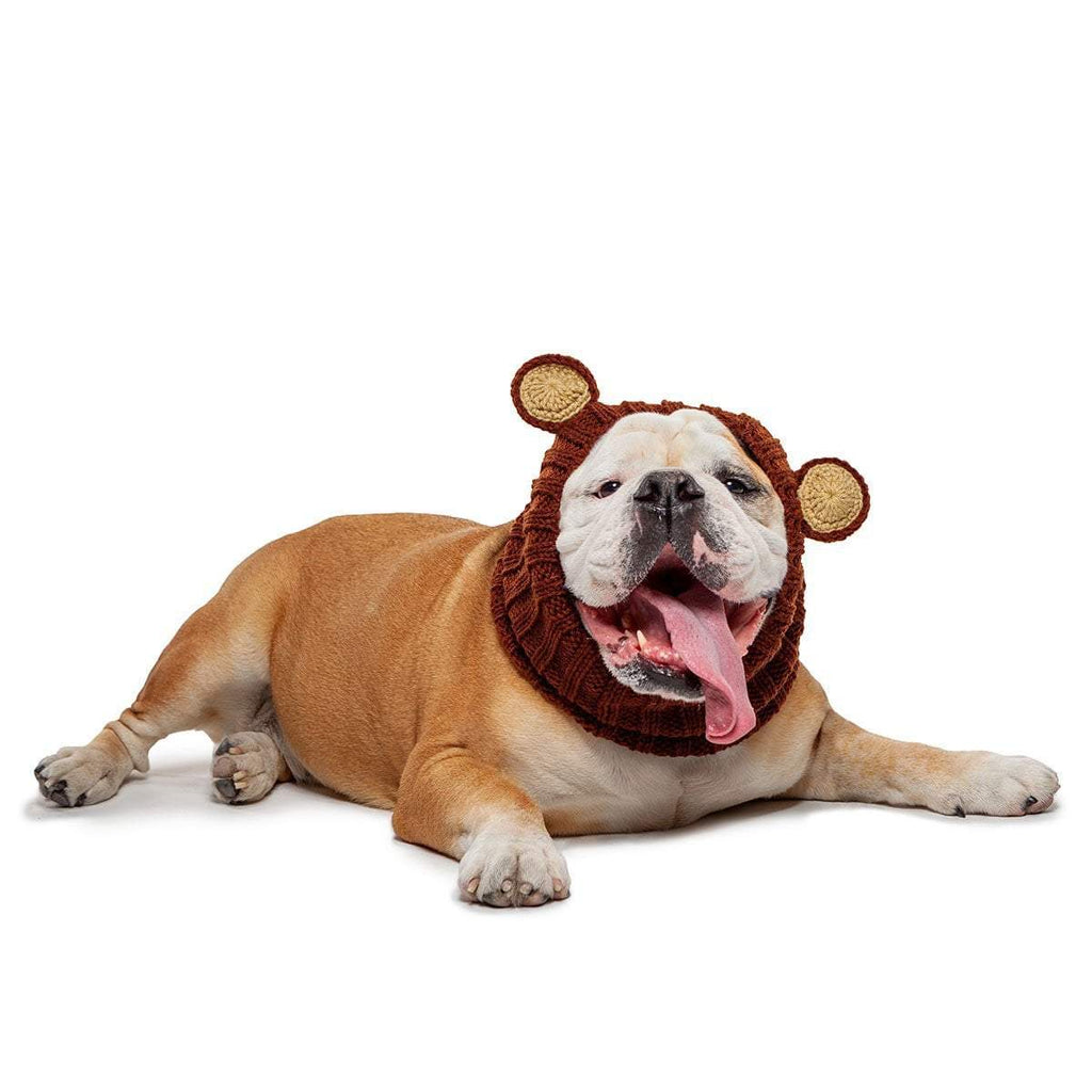 Dog Costume Grizzly Bear Zoo Snood