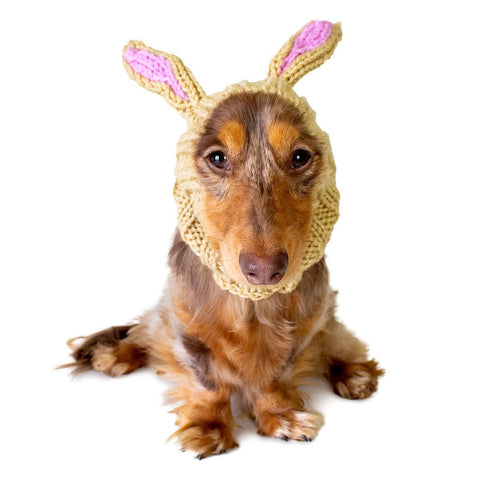 Dog Costume Jack Rabbit Zoo Snood