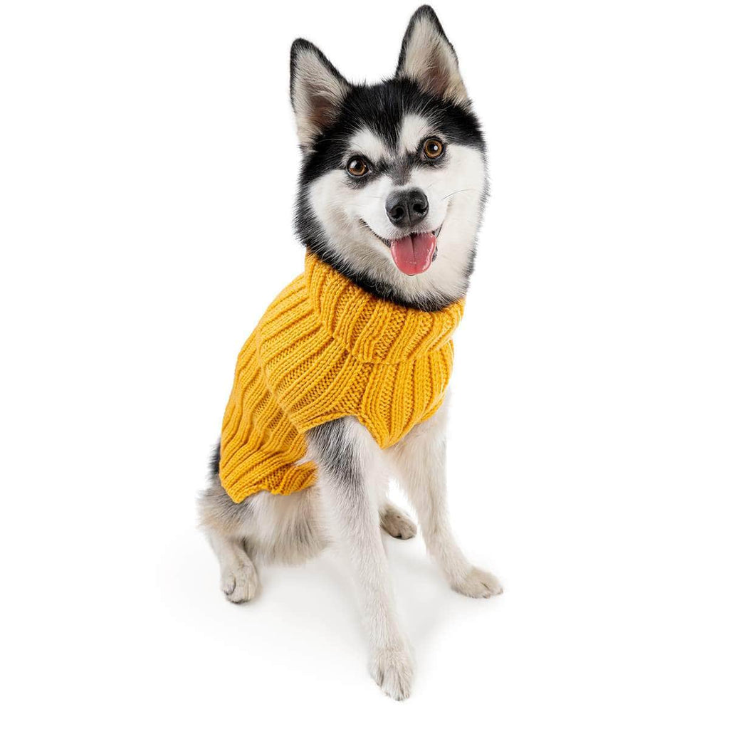 Dog Costume Yellow Zoo Sweater