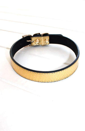 gold metallic crocodile vegan leather fashion dog collar