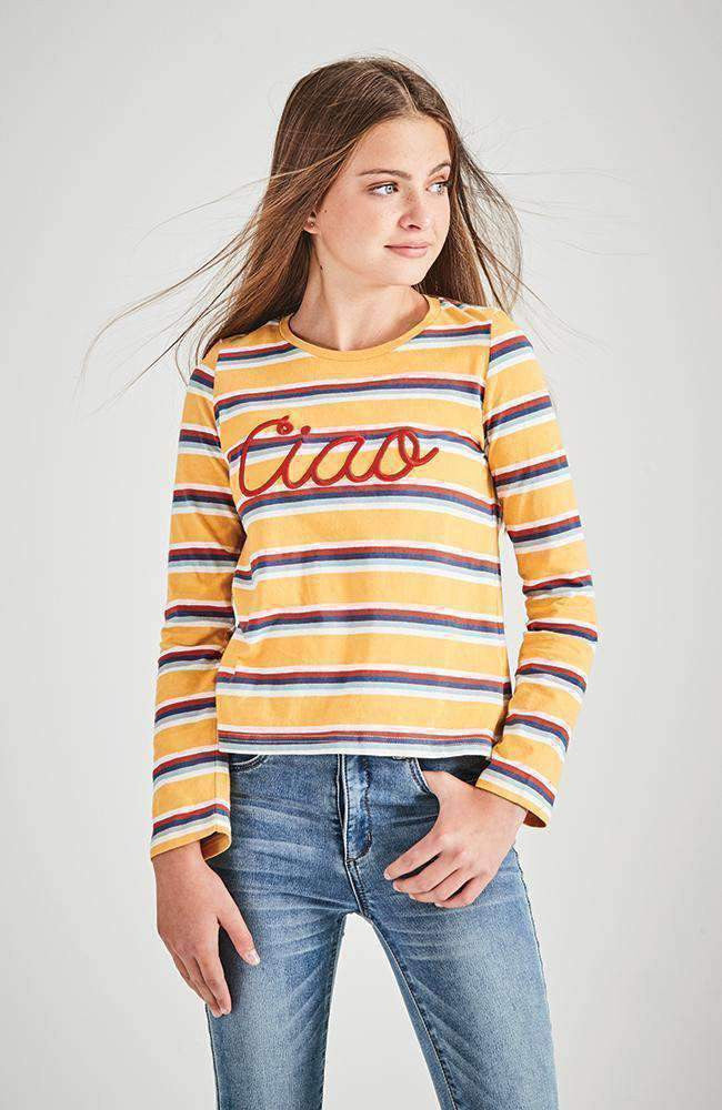 multistripe rainbow long sleeve tee
