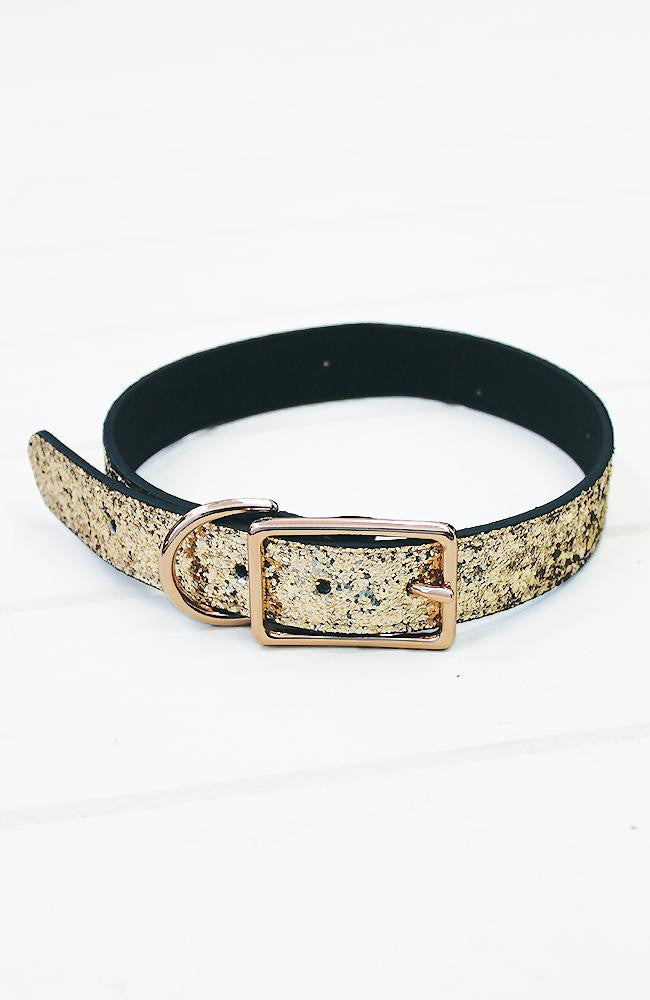 Gold Glitter Vegan Leather Fashion Dog Collar