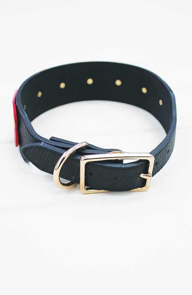 red to pink hearts dog collar