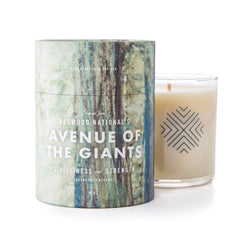 Avenue of the Giants Redwood Candle
