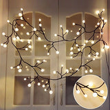 Globe LED Fairy String Lights