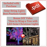 Outdoor Solar String Lights in Blue and Cool White