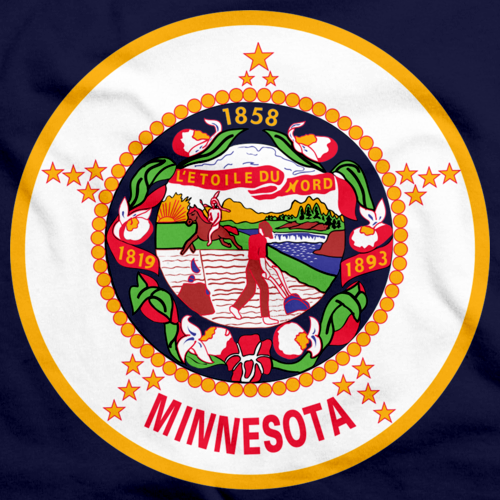 Minnesota State Flag Navy art preview