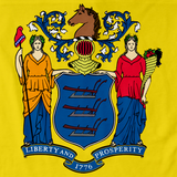 New Jersey State Flag Yellow art preview