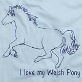 I Love My Welsh Pony and Cob | Horse Lover Light blue art preview