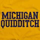 Michigan Quidditch Scarf Gold And Navy Art Preview