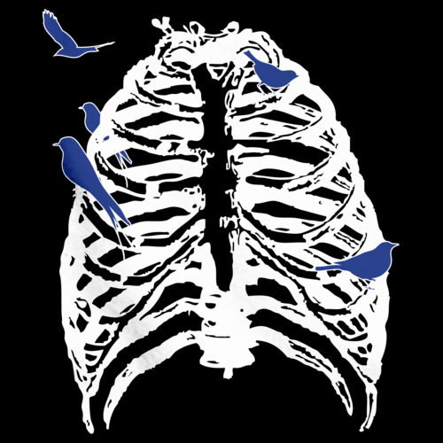 SKELETON RIB CAGE WITH SONGBIRDS! Black art preview