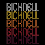 Bicknell, IN | Retro, Vintage Style Indiana Pride