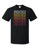 Standard Black Bridgeview, IL | Retro, Vintage Style Illinois Pride  T-shirt