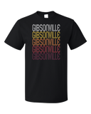 Standard Black Gibsonville, NC | Retro, Vintage Style North Carolina Pride  T-shirt