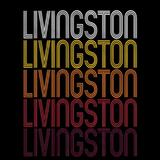 Livingston, CA | Retro, Vintage Style California Pride