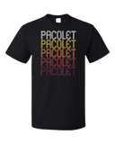 Standard Black Pacolet, SC | Retro, Vintage Style South Carolina Pride  T-shirt