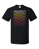 Standard Black Prospect, OH | Retro, Vintage Style Ohio Pride  T-shirt