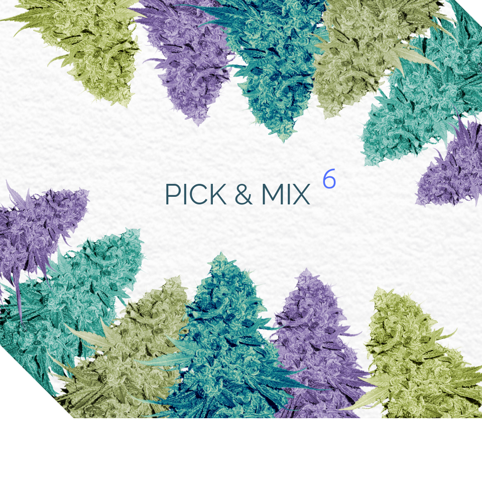 PICK AND MIX 6 - Semillas a elección