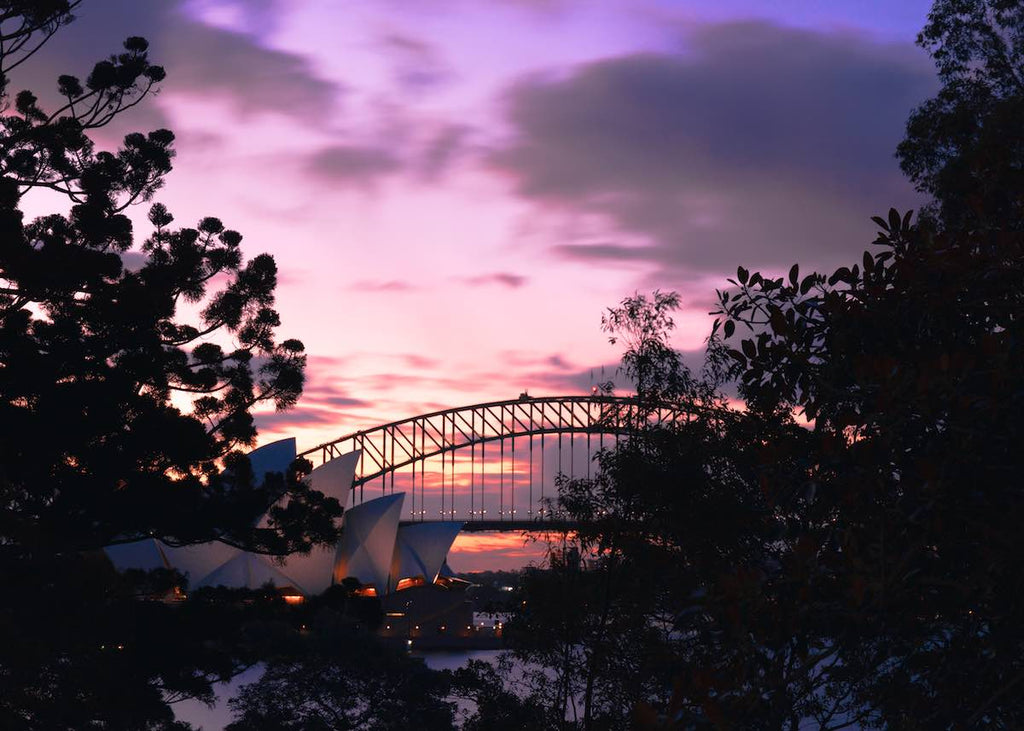 Sydney Harbour Springtime - Two
