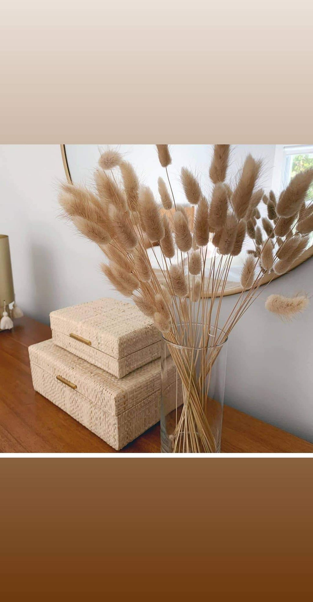 Bunny tails, natural colour. Dried and preserved. - Three Nines Boutique