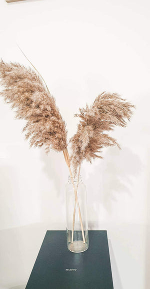 Natural dried pampas grass. - Three Nines Boutique