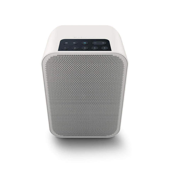 Bluesound All-In-One with Speaker Bluesound Flex 2i allinone