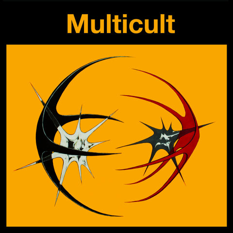 Multicult ‎– Position Remote LP
